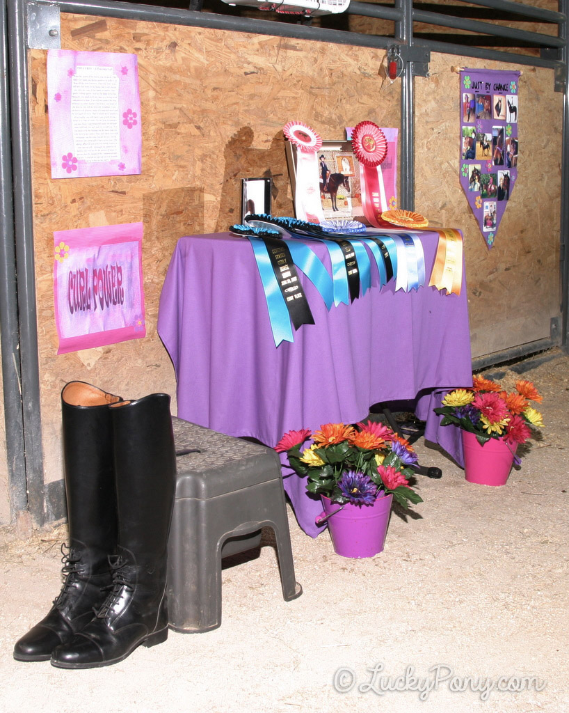 Horse stall decoration ideas march 2014 luckypony com blog