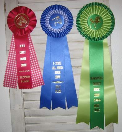 horse_show_ribbons