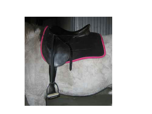 """Ribbon Saddle Pads""""></p> <!-- AddThis Advanced Settings above via filter on the_content --><!-- AddThis Advanced Settings below via filter on the_content --><!-- AddThis Advanced Settings generic via filter on the_content --><!-- AddThis Share Buttons above via filter on the_content --><!-- AddThis Share Buttons below via filter on the_content --><div class="""