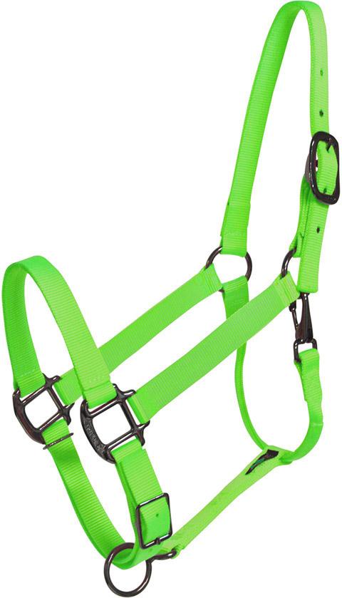 Lime Green Horse Halter Usa Made