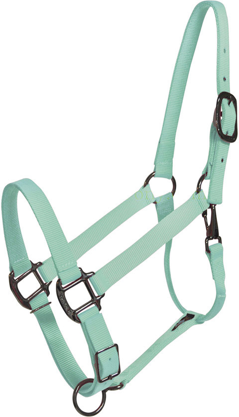 Image result for teal halter