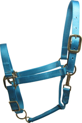 Turquoise Horse Halter Usa Made