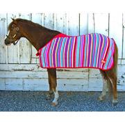 baby horse blanket