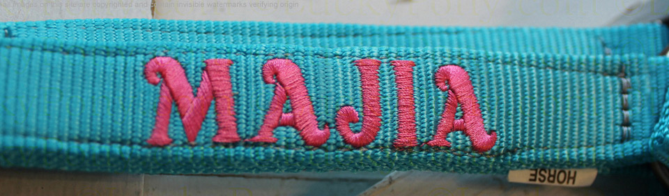 Webbed Stall Guard With Personalized Embroidery